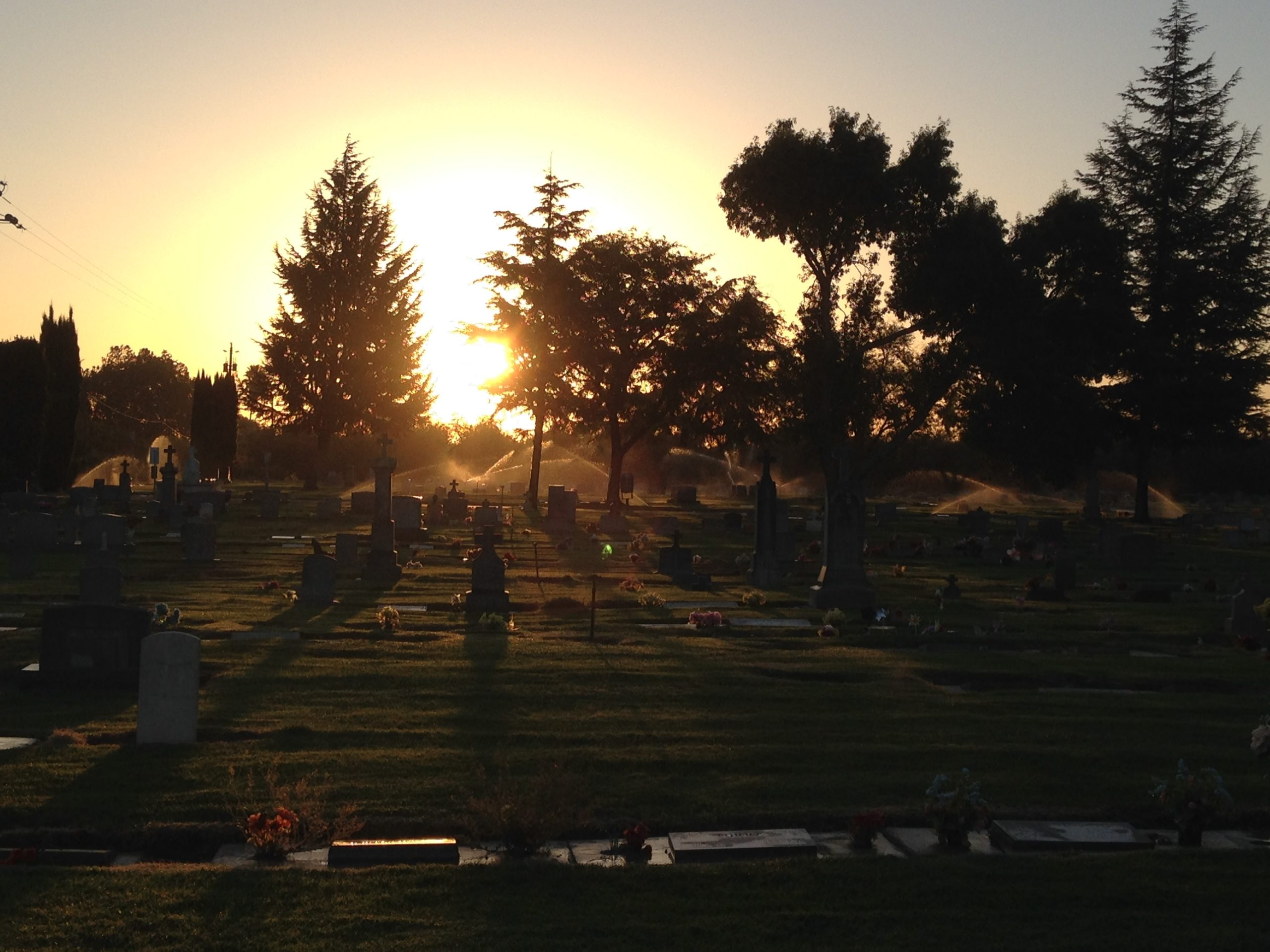 view across Winton Cemetery at sunrise